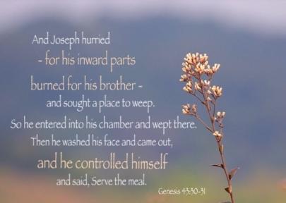 Genesis 43 control