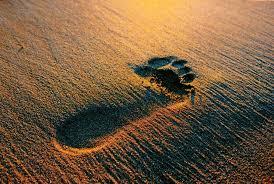 Genesis 48 footprint