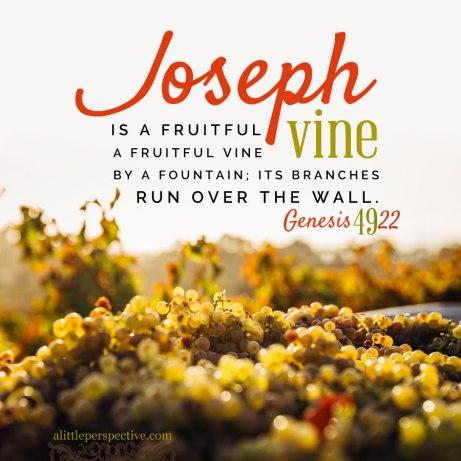 Genesis 49 Joseph