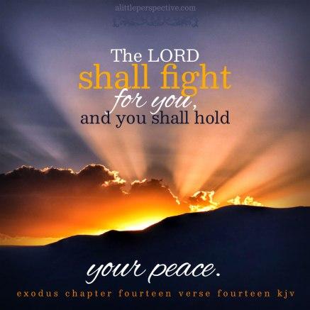 Exodus 14 God will