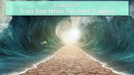 Exodus 14 trapped