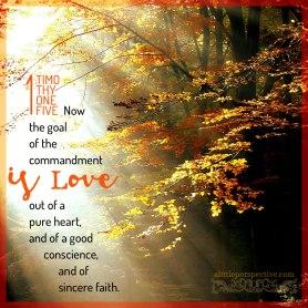 Exodus 22 love