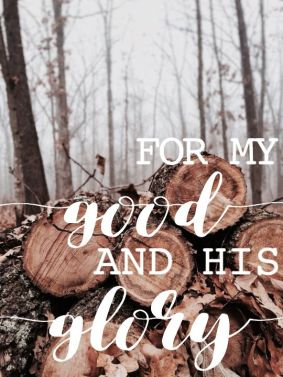 Exodus 22 my good for His glory