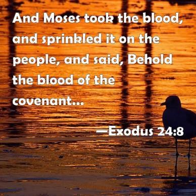 Exodus 24 8