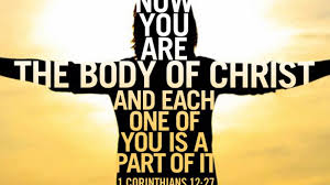 Romans 12 Body of Christ