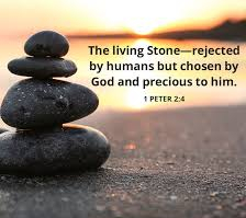 1 Peter 1 living stones