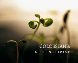 Colossians 1 life