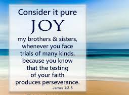 James 1 joy