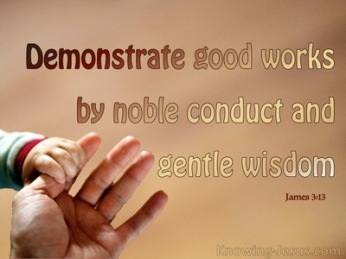 James 3 conduct