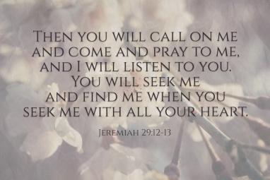 Jeremiah 29 seek