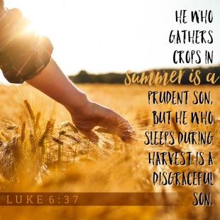 Proverbs 10 Jesus quote