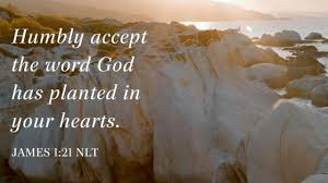 Proverbs 11 Gods voice