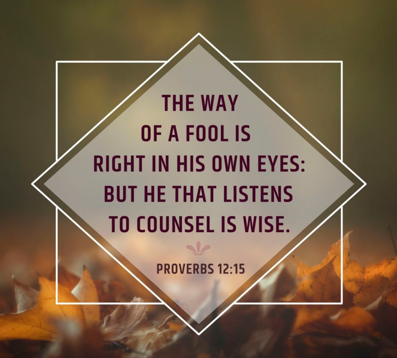 Proverbs 12 wise