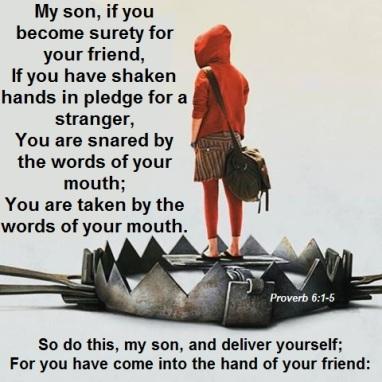 Proverbs 6 snares