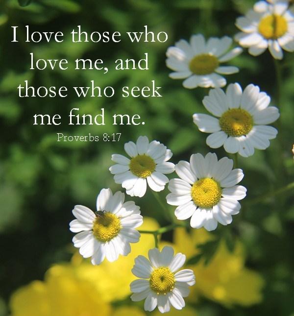 Proverbs 8 love