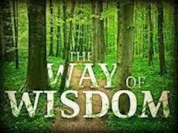 Proverbs 8 way