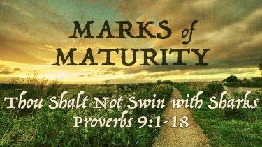 Proverbs 9 sharks