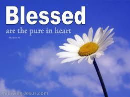 Matthew 5 pure