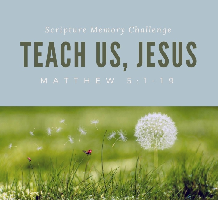 Matthew 5 teach us Jesus