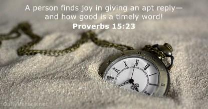 Proverbs 15 23