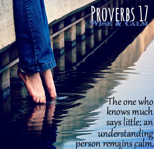 PRoverbs 17 27
