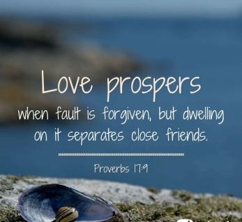 Proverbs 17 9 prosper