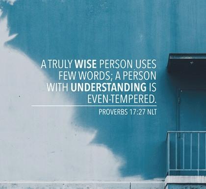 Proverbs 17 few words