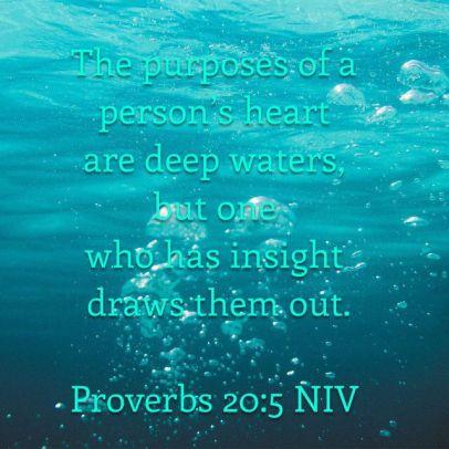 Proverbs 20 5