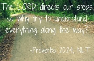 Proverbs 20 direct