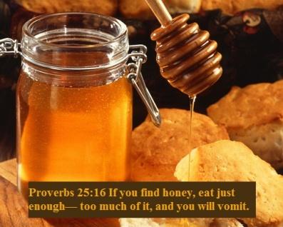 Proverbs 25 16