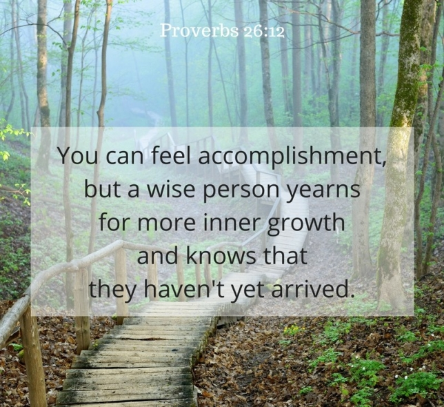 Proverbs 26 wise