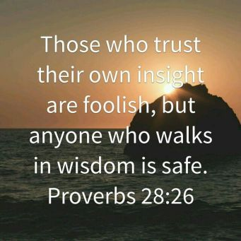 Proverbs 28 walk in wisdom