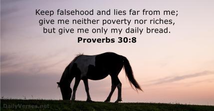 Proverbs 30 8