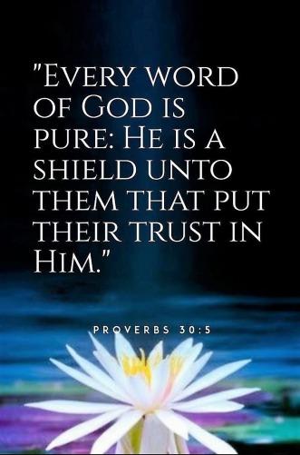 Proverbs 30 trust