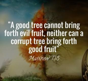 Matthew 7 18