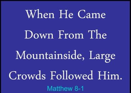 Matthew 8 crowds followed