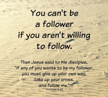 Matthew 8 follow