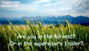 Matthew 9 harvest or trailer