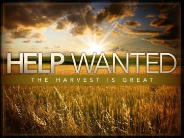 Matthew 9 help wanted