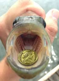 Matthew 17 coins in the fish