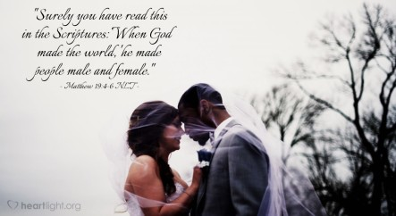 Matthew 19 marriage